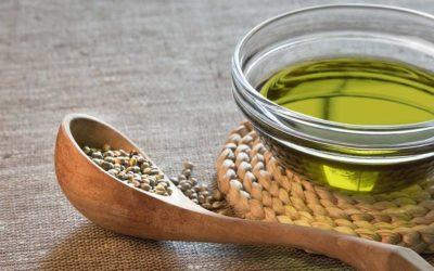 Por qué incluir Aceite de Semillas de Cáñamo en la dieta de tu mascota