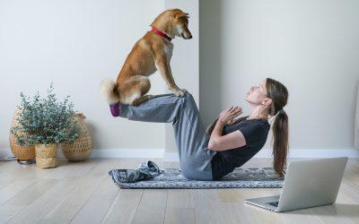 Doga: los perros también hacen yoga